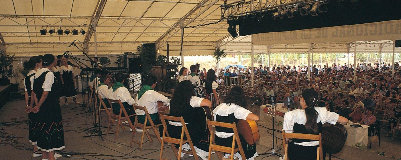 Baños Arabes Nudistas:Home » Festival de Música Tradicional de la Alpujarra » Festival de