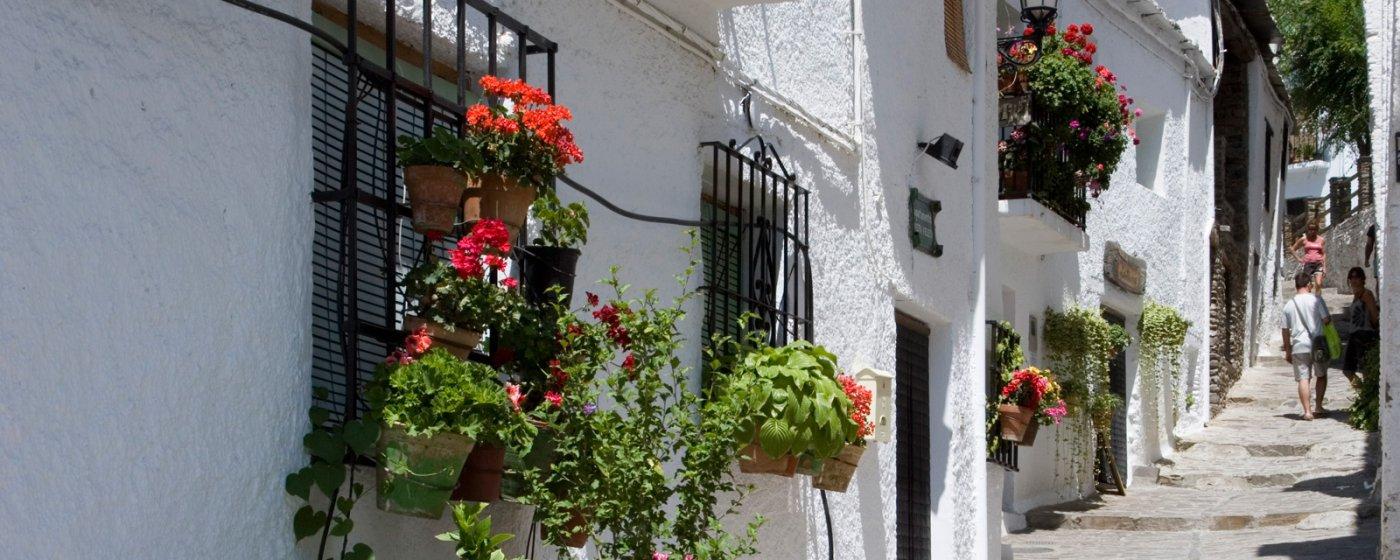 Capileira - Qué ver y qué hacer. Turismo de Granada