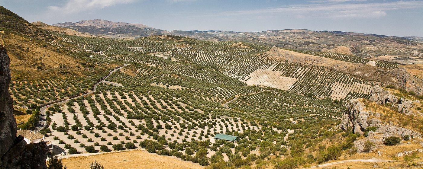 Baños Arabes Nudistas:Moclín Turismo de Granada