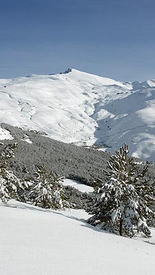 esquiar-en-sierra-nevada2