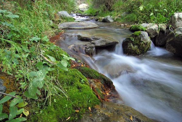 rio-monachil-naturaleza